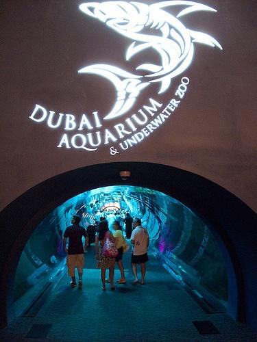 Dubai Underwater Zoo & Aquarium
