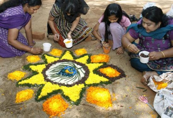 The-yellow-sunflower