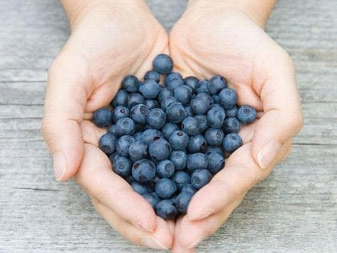 blueberry health workout