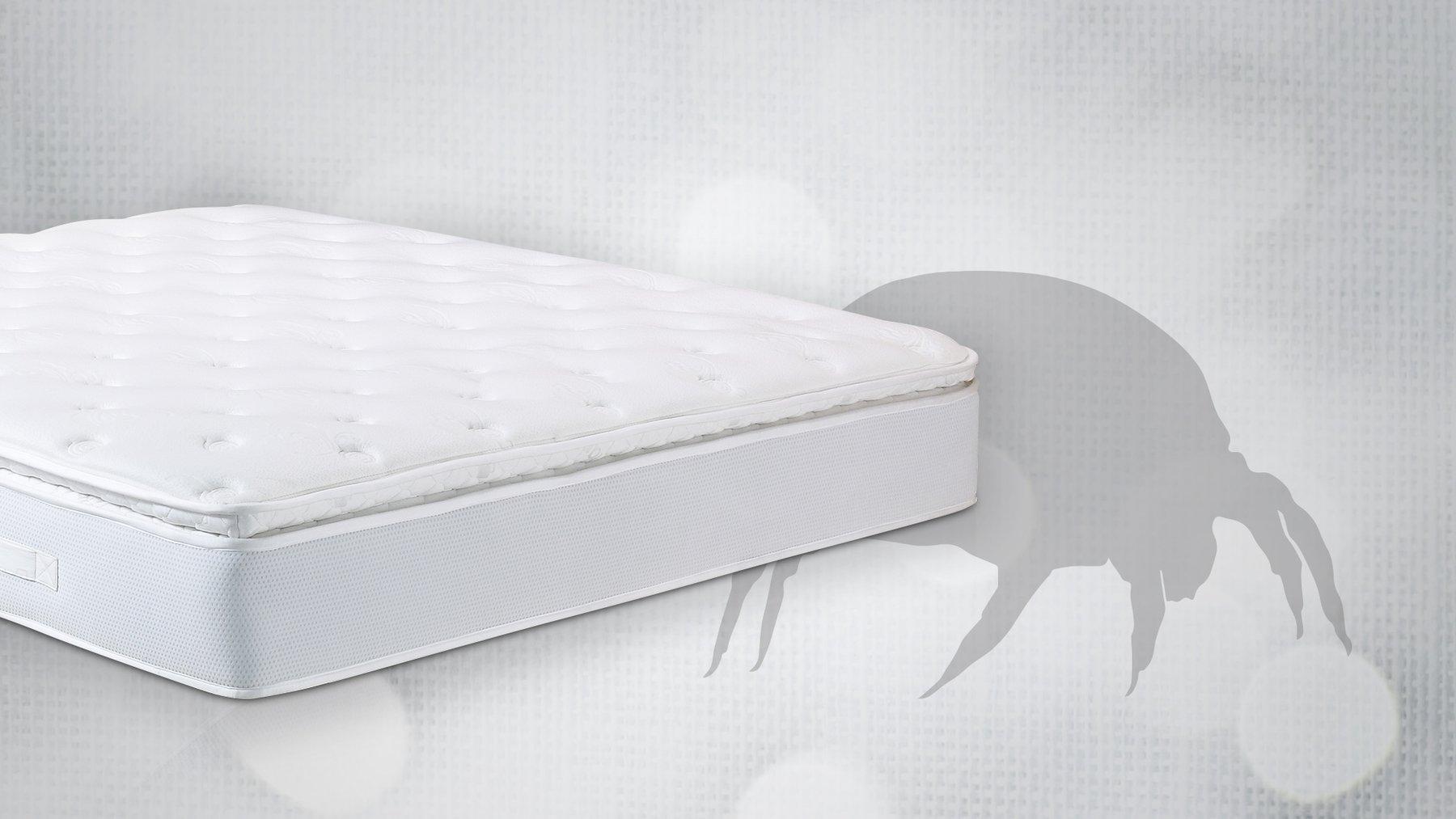 best mattress for allergy sufferers
