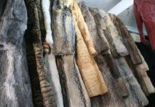 ban fur sales