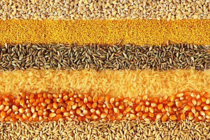 Gluten-Free Whole Grain Foods