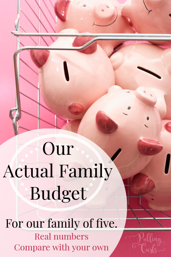 Family Household Budget