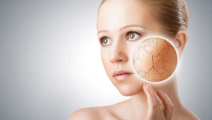 foods for dry skin