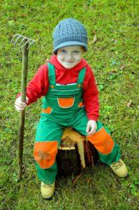 professional tree stump grinder