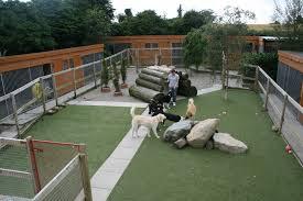 dog boarding facility