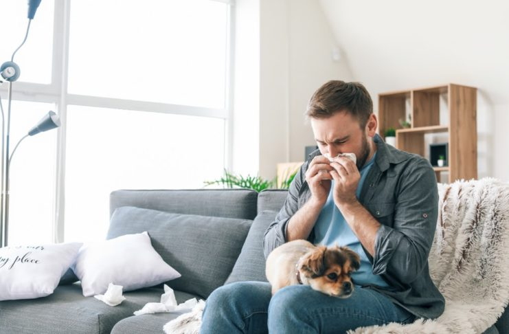 remedies for allergens