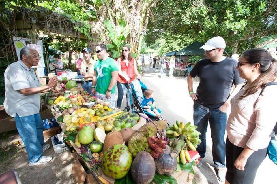 foods at fruit & spice park