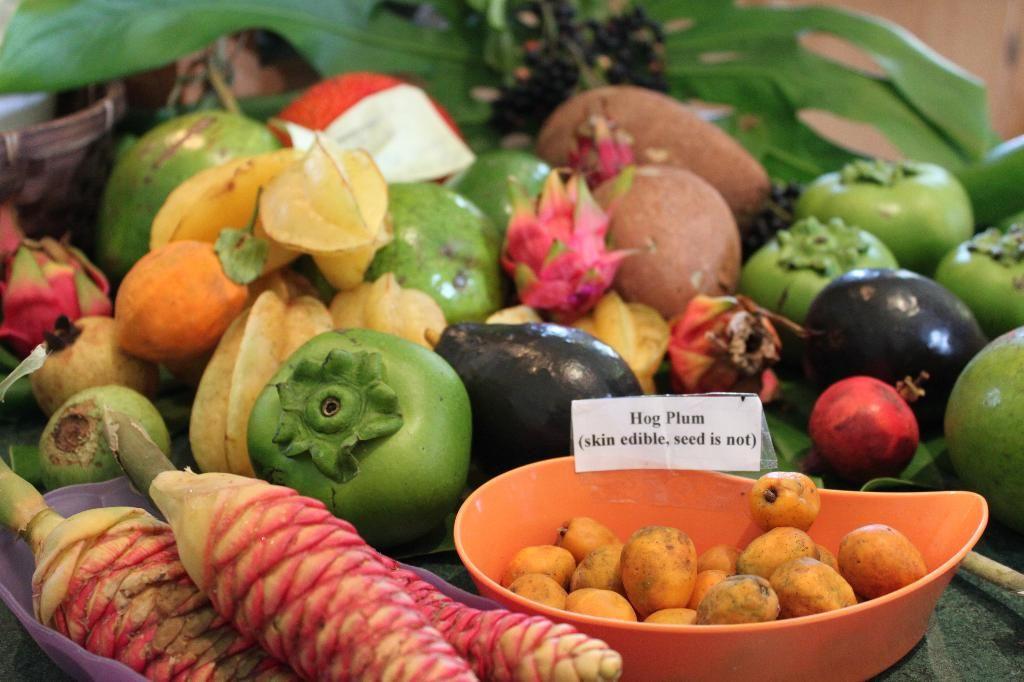 make a trip to fruit & spice park